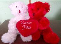Bear Love Couple