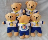 Bear Custom