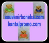 Boneka Bear Duduk Custom Cigna